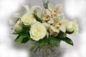 Fantastic all white flowers