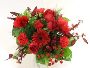 Red flowers with green plant leave in background