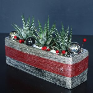 Christmas plant decoration